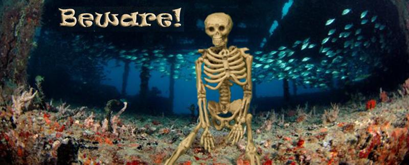 Halloween Dive